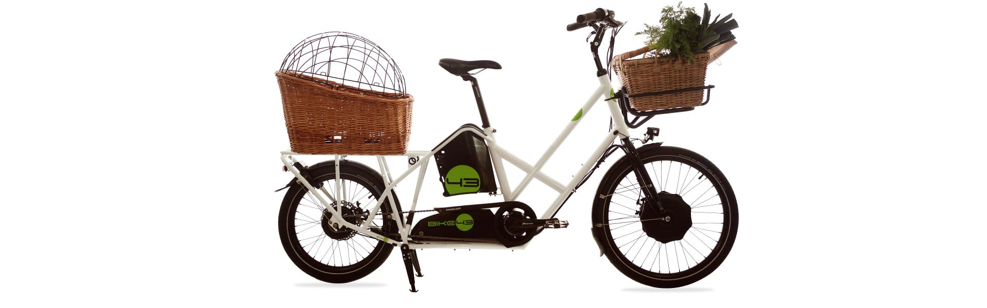 dog transport bicycle